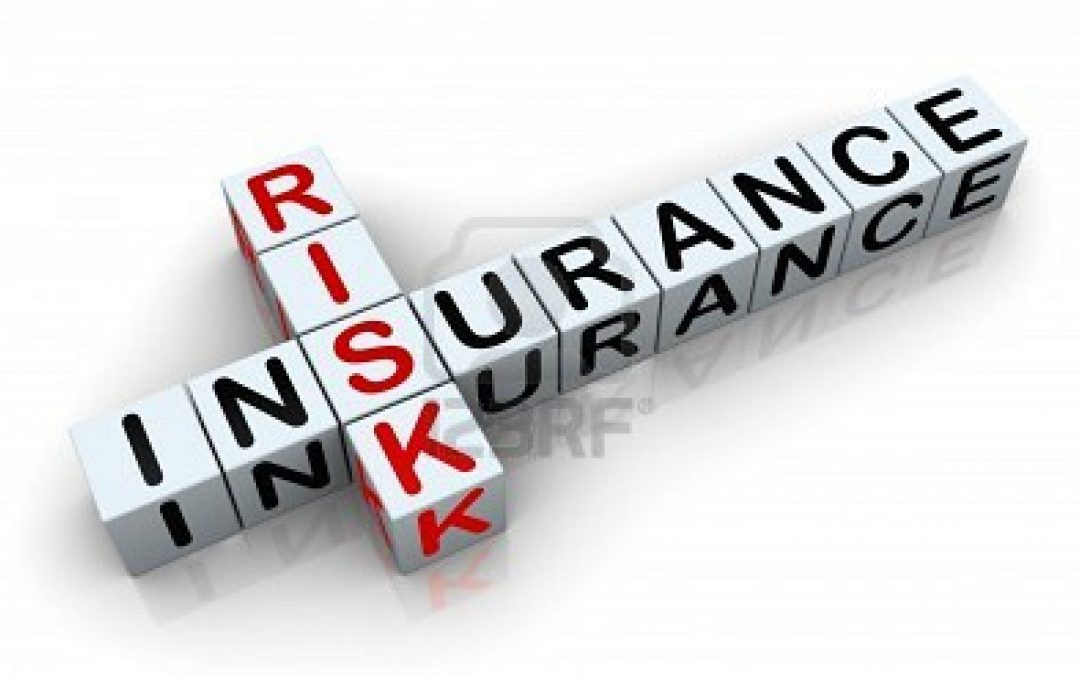 PROFESSIONAL LIABILITY POLICIES  aka  E & O Insurance Policies — companies that provide